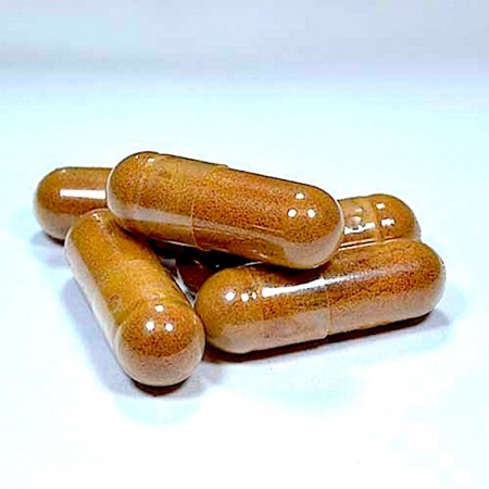 schisandra capsules jpeg